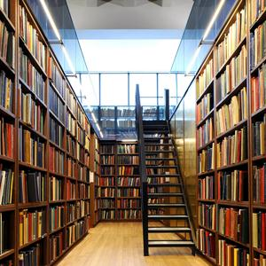 Библиотеки Иульитина